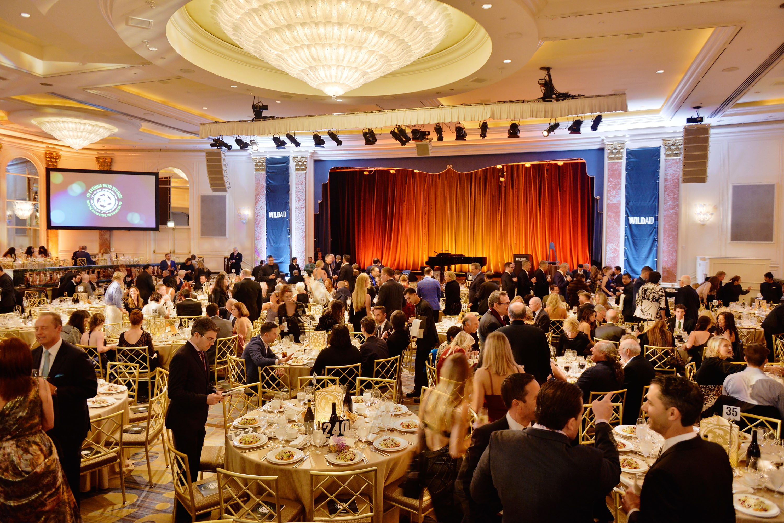 WildAid Gala Raises Record $2.9 Million